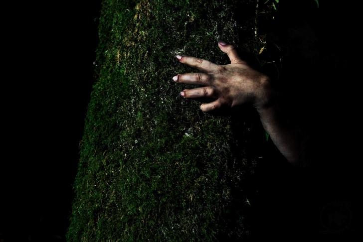 Mano aferrada al tronco de un arbol