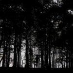 Historias de un rescatista en el Servicio Forestal – Parte IV