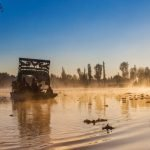Chinampa: milenaria técnica de agricultura en peligro de extinción