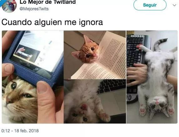 Marcianadas 326 060418001801 (122)
