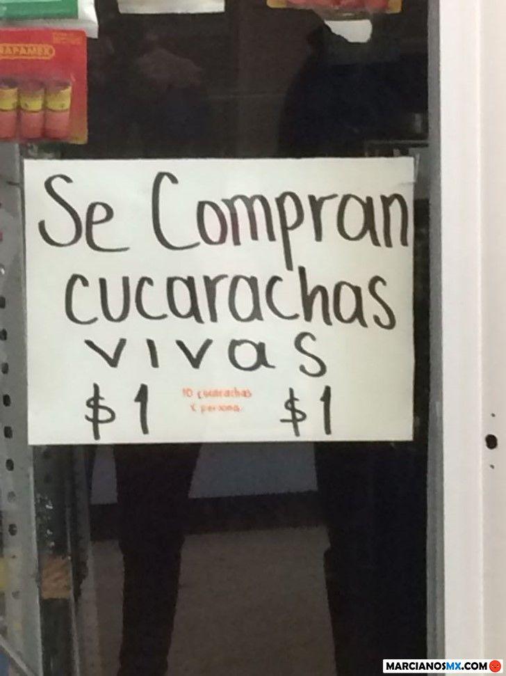 Marcianadas 327 130418001628 (194)