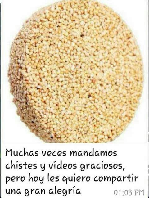 Marcianadas 327 130418001628 (41)