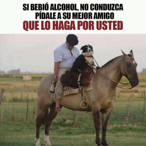 Marcianadas 329 270418001424 (11)
