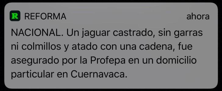 Marcianadas 329 270418001424 (113)