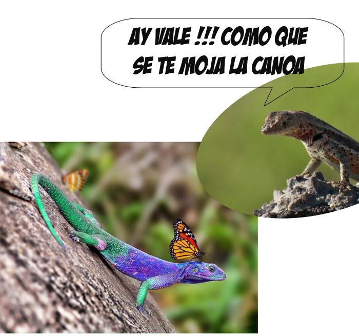Marcianadas 329 270418001424 (241)
