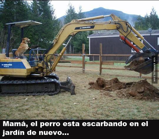 Marcianadas 329 270418001424 (242)