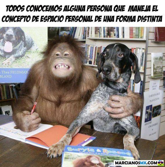 Marcianadas 329 270418001424 (246)