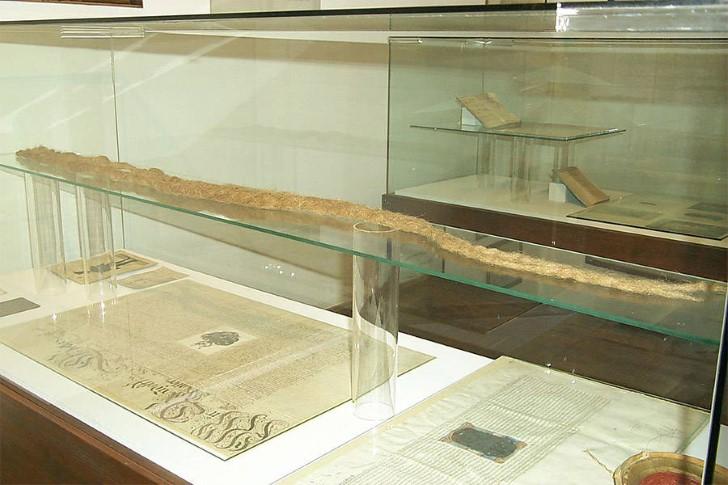 Barba de hans steininger en exhibicion