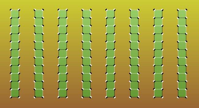 Ejemplos ilusiones opticas (5)