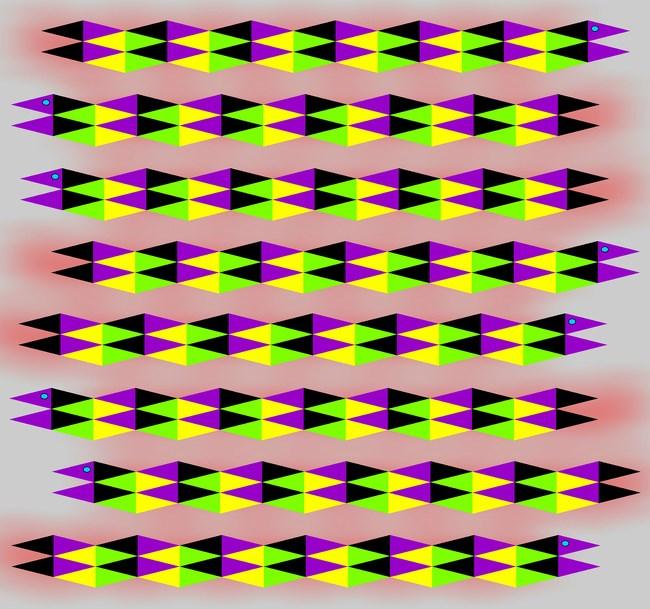 Ejemplos ilusiones opticas (9)