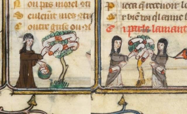 Ilustraciones curiosas obras medievales (13)