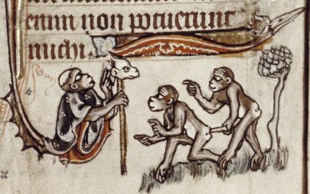 Ilustraciones curiosas obras medievales (14)