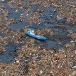 Isla de basura en el pacifico