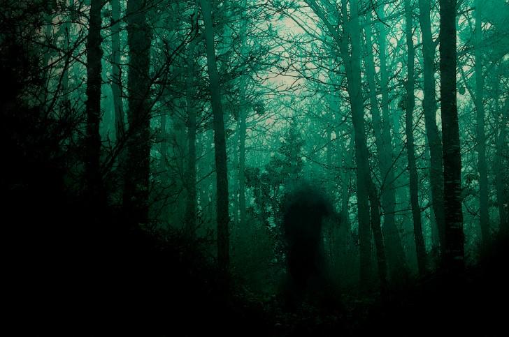 Monstruo en el medio del bosque