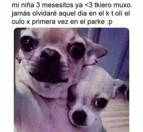 Marcianadas 332 180518001945 (220)