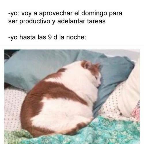 Marcianadas 332 180518001945 (76)