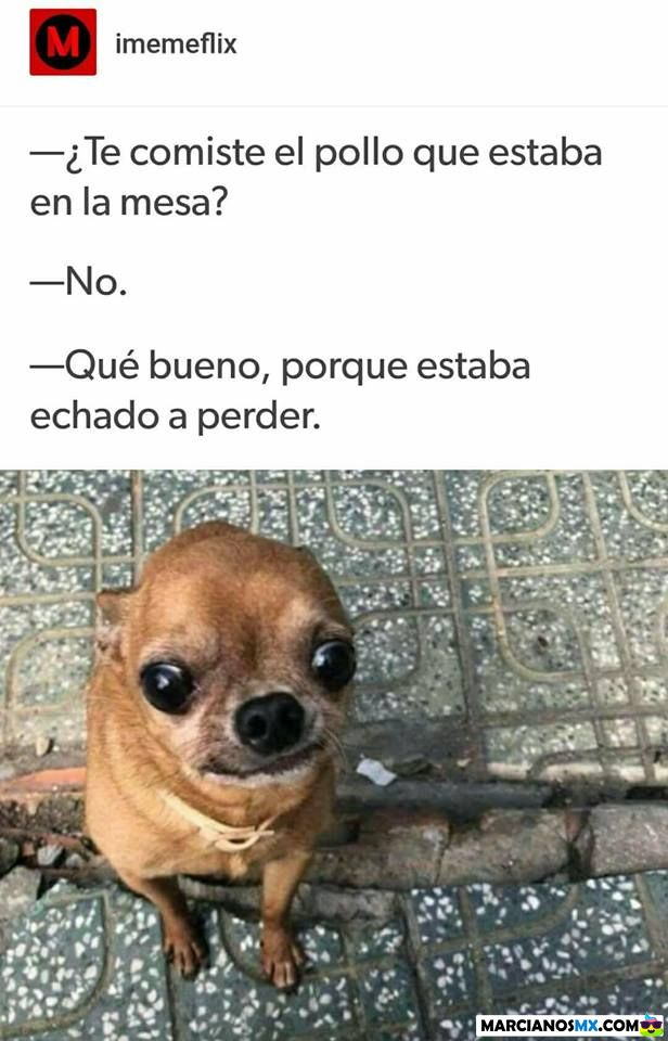 Marcianadas 333 250518001422 (80)
