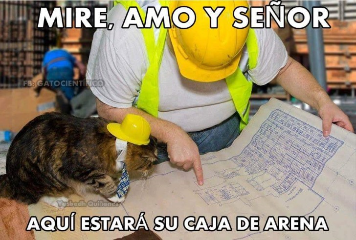 Marcianadas 334 010618001426 (112)