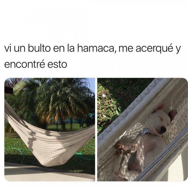 Marcianadas 334 010618001426 (99)