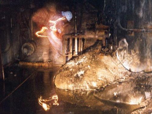 Pata de elefante en chernobil