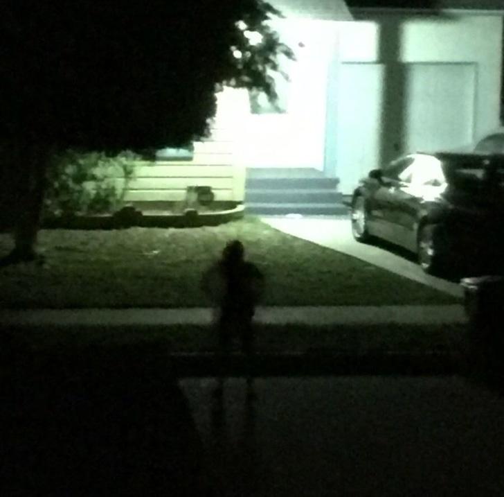 Perturbador el stalker
