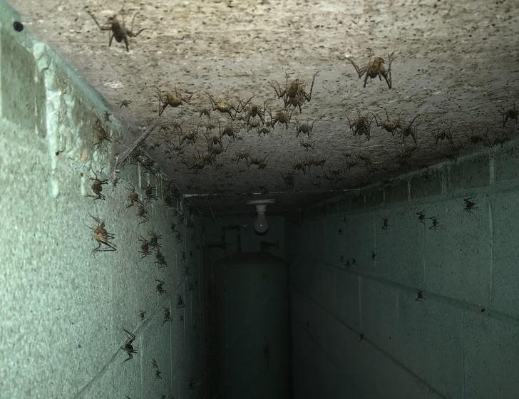 Perturbador invasion bunker