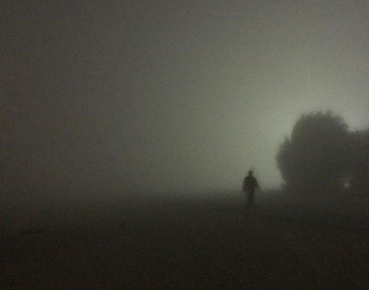 Perturbador niebla