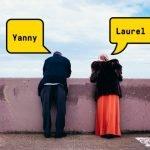 Yanny laurel