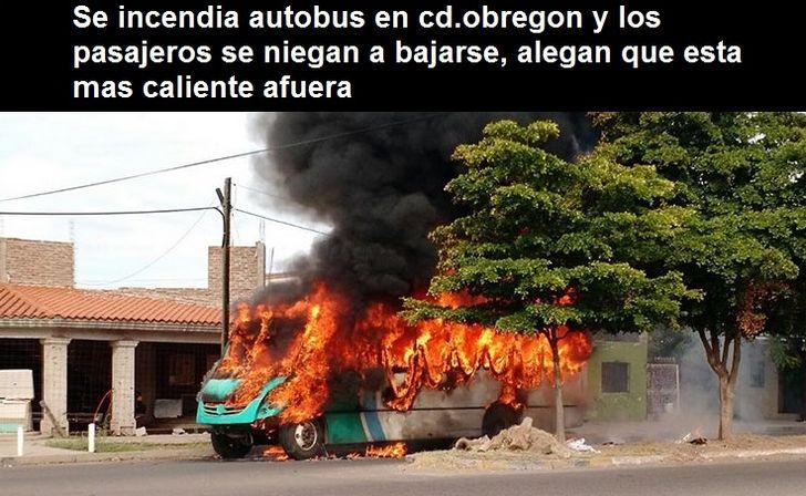Marcianadas 334 0106180053 (10)