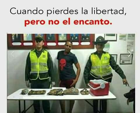Marcianadas 335 080618001432 (41)