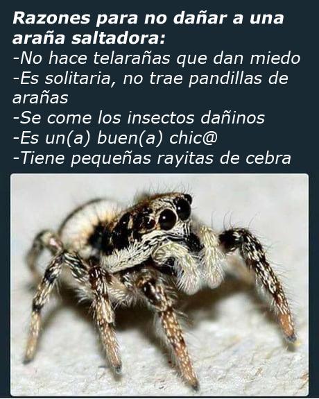 Marcianadas 336 151618001413 (165)
