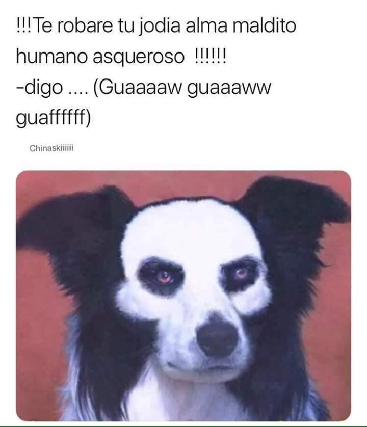 Marcianadas 337 220618001249 (140)