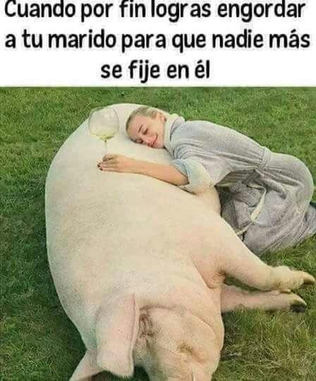Marcianadas 338 290618001720 (33)
