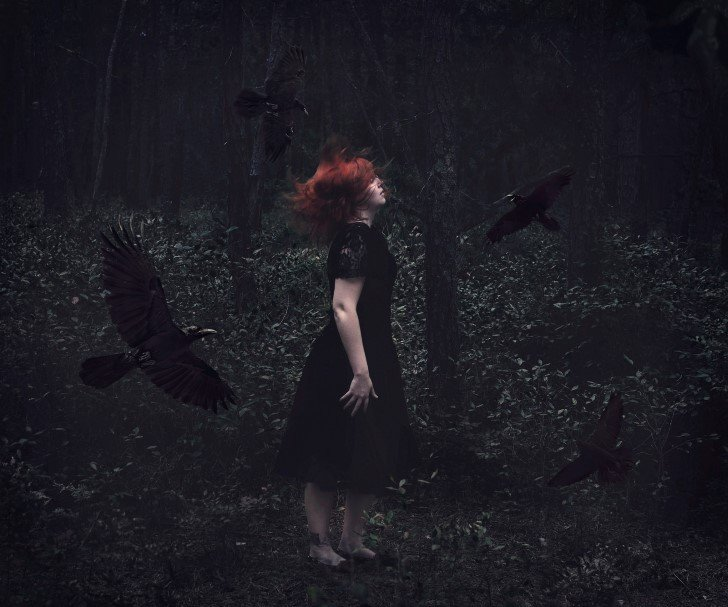 El llamado de los cuervos