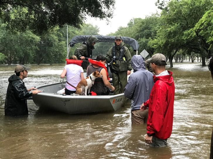 Harvey tormenta tropical texas