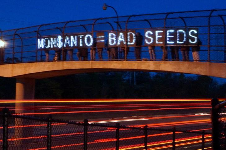 Monsanto bad seeds