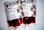 Paquetes bolsas de sangre