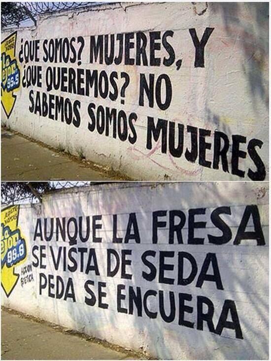 Marcianadas 339 200718001621 (233)