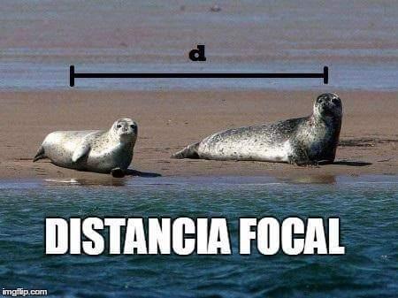 Marcianadas 339 200718001621 (331)