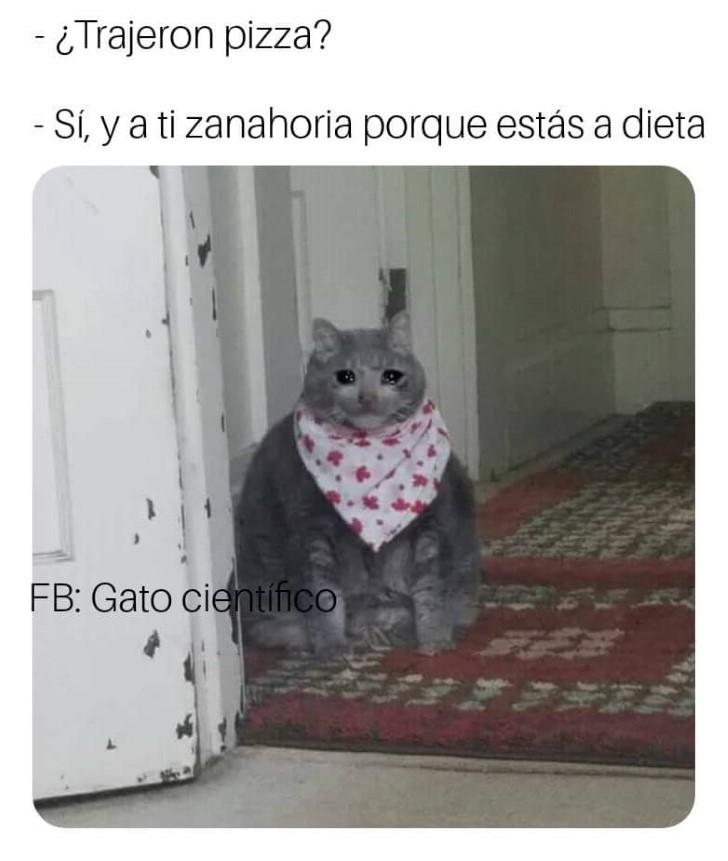 Marcianadas 343 171818001310 (12)