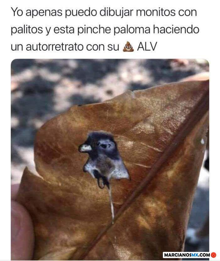 Marcianadas 344 240818001834 (170)