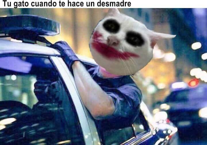 Marcianadas 344 240818001834 (177)
