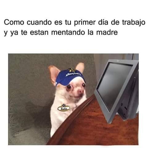 Marcianadas 344 240818001834 (25)