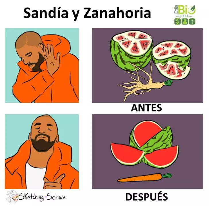 Marcianadas 345 31082018001850 (150)