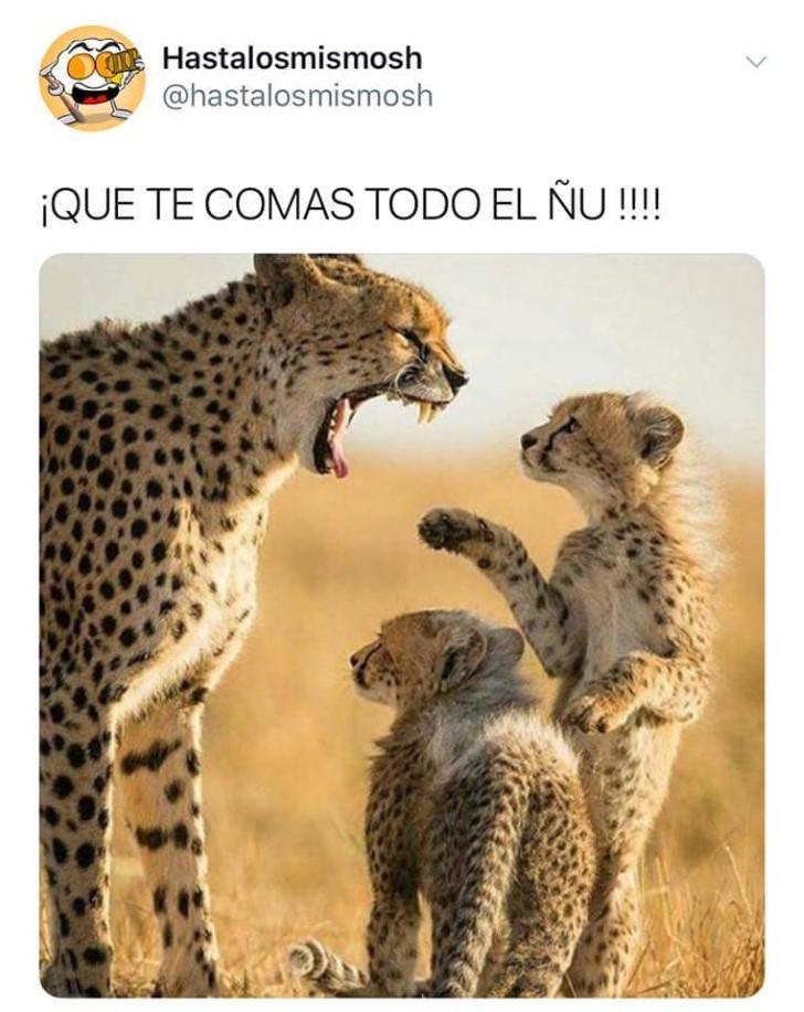 Marcianadas 345 31082018001850 (202)