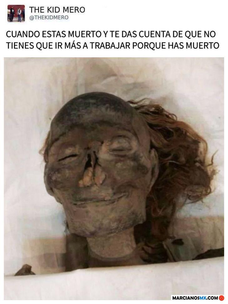 Marcianadas 345 31082018001850 (386)