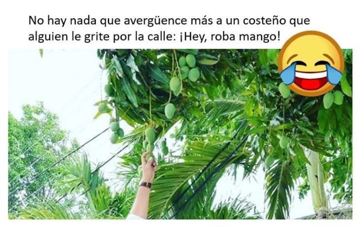 Marcianadas 345 31082018001850 (62)