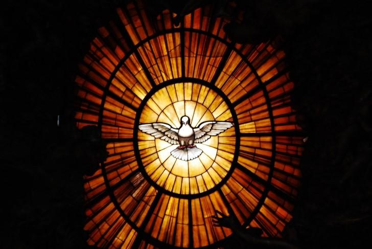 Paloma de la paz en el vaticano