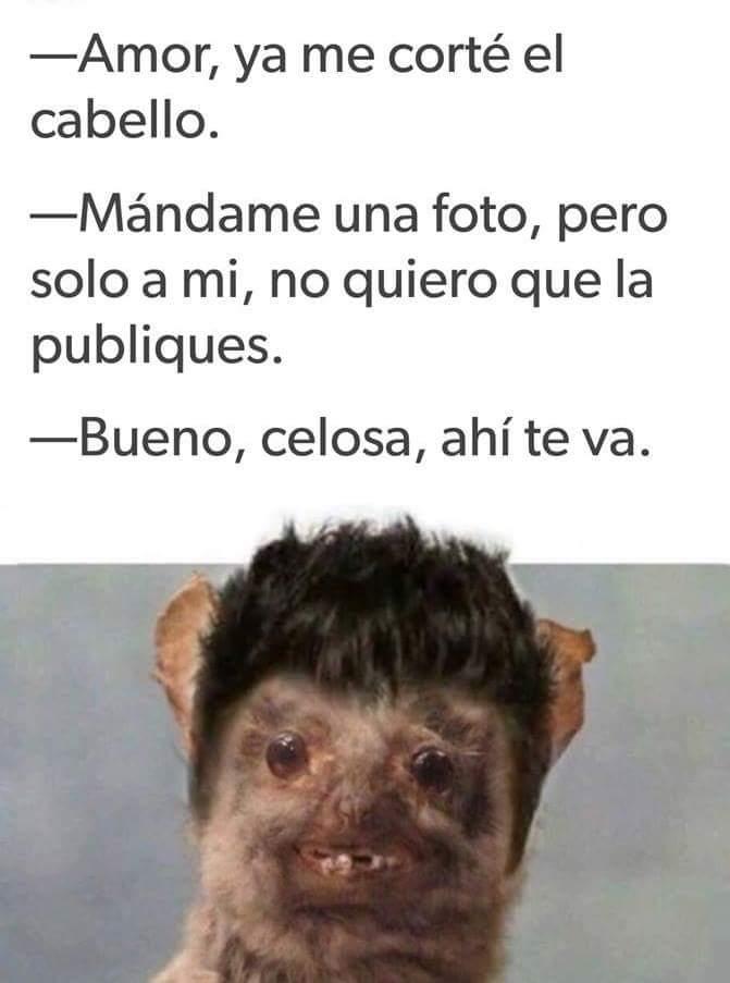 Marcianadas 348 210918001804 (21)