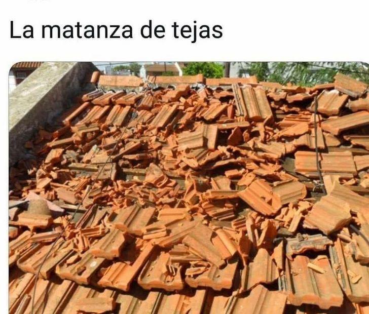 Marcianadas 348 210918001804 (213)